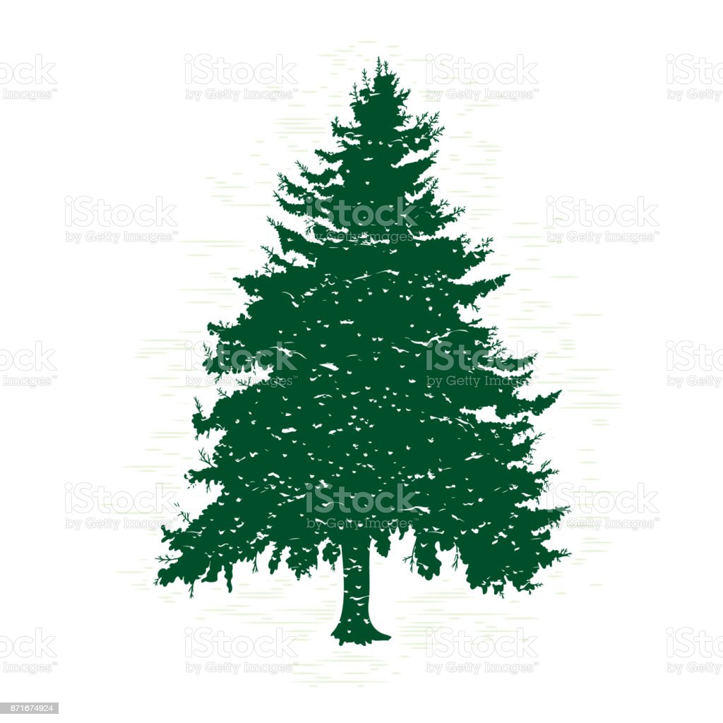 Silhouettes of green pine tree vector illustration vintage textured silhouettes of green pine tree vector illustration vintage textured grunge fir tree design template thecheapjerseys Gallery