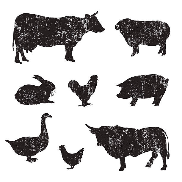 silhouettes of hand drawn farm animal - farm animals stock illustrations, clip art, cartoons, & icons