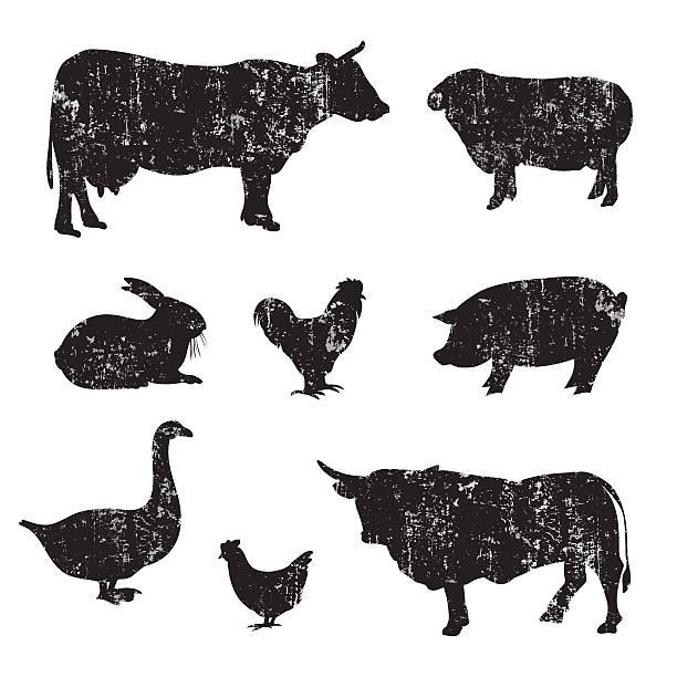 Silhouettes of hand drawn Farm animal vector art illustration