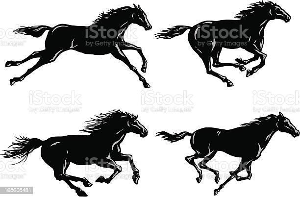 Silhouettes of horses running vector id165605481?b=1&k=6&m=165605481&s=612x612&h=jltkgeriwupc69irhlurfbp oj5sp 44guxb9rvlork=