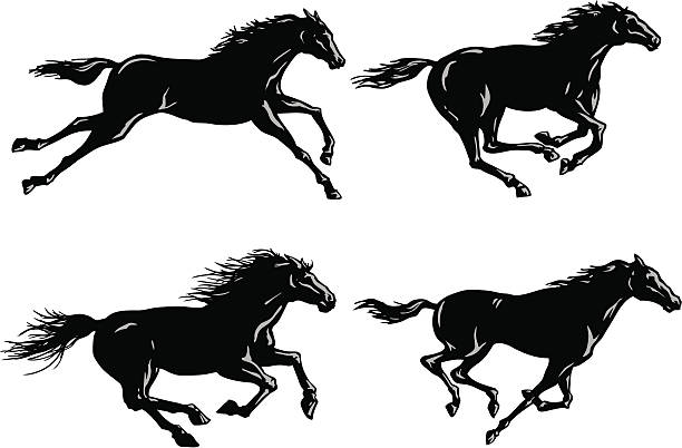 Silhouettes of Horses Running vector art illustration