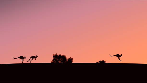 Silhouettes of kangaroos against the background of the evening sky Silhouettes of kangaroos against the background of the evening sky, vector illustration kangaroo stock illustrations