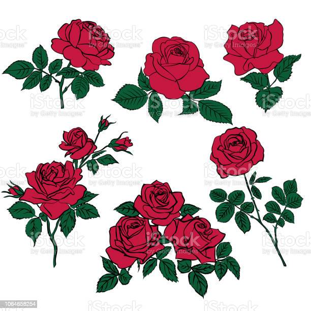 Silhouettes of red roses and green leaves vector id1064658254?b=1&k=6&m=1064658254&s=612x612&h=wd8gvebgfl hb0sgsfjlbbz1d3a o7x3cp jgyy3syq=