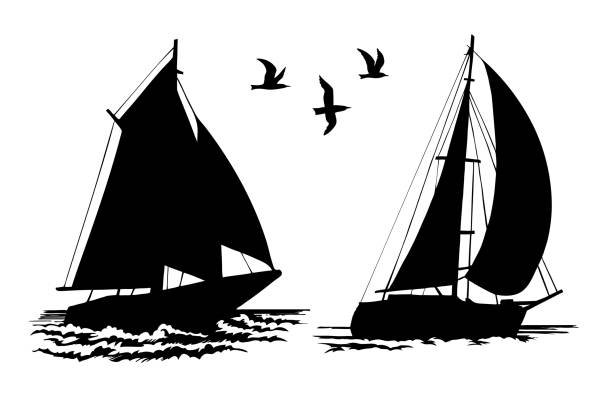 Silhouettes of sailing yachts and seagulls vector art illustration
