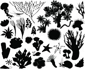 silhouettes of sea animal