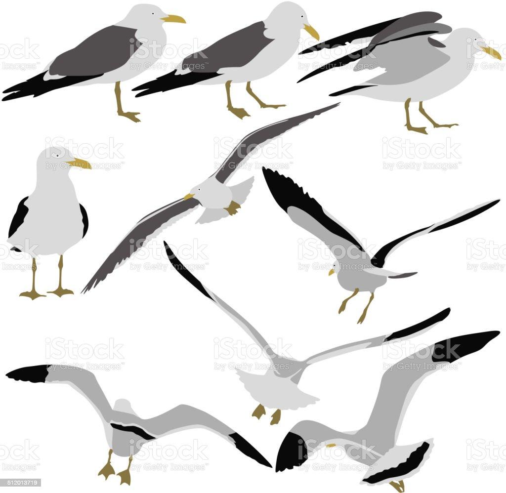 silhouettes of seagulls vector art illustration