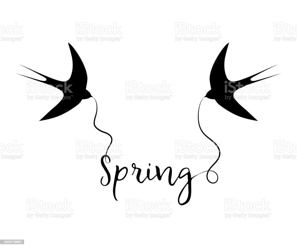 Silhouettes of swallows with the text 'Spring' vector art illustration