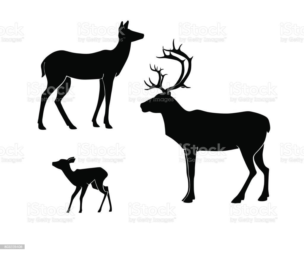 Silhouettes du cerf sur fond blanc. , biche, faon. - Illustration vectorielle