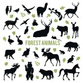 Collection of silhouettes of forest animals isolated on white background.