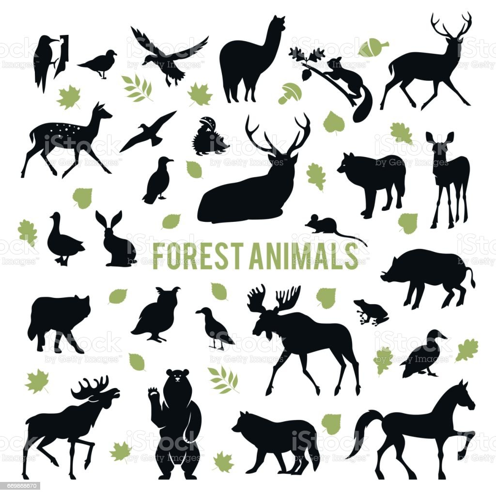 Silhouettes of the forest animals. vector art illustration