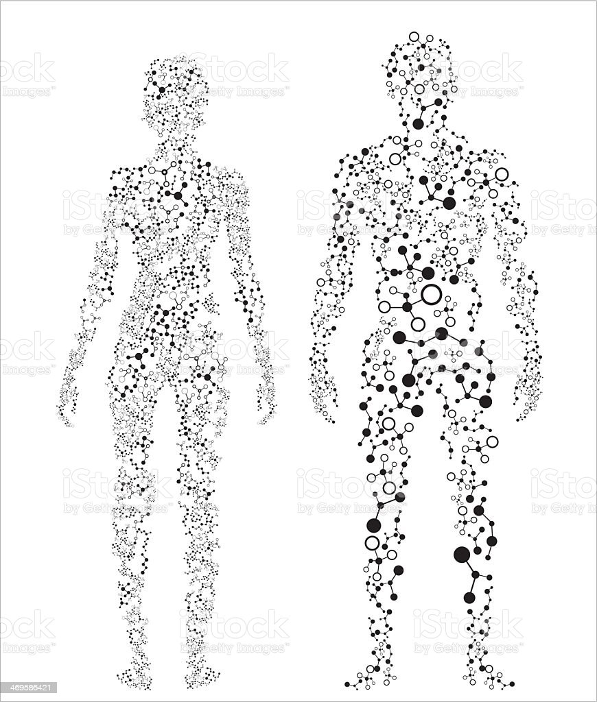 2 silhouettes of the human body made up of dots vector art illustration