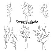 istock silhouettes of tree trunks with fancy branches 1215121682