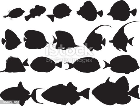 istock Silhouettes of tropical fishes / Poissons tropicaux ombragés 183082453