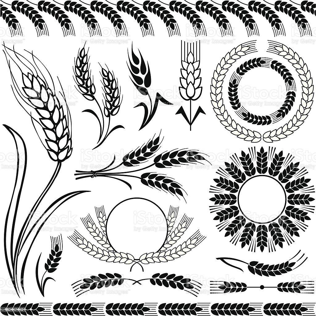 Silhouettes of wheat vector art illustration