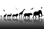Silhouettes of wild animals with reflections background. Vector illustration