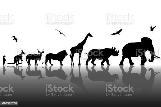 Silhouettes of wild animals with reflections background vector vector id694325788?b=1&k=6&m=694325788&s=612x612&h=n5b9th 3mchwqnhn1cgsjebv86tw3uvgudkgintcby0=