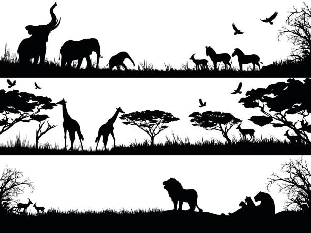 Silhouettes set of African wild animals in nature habitats vector art illustration