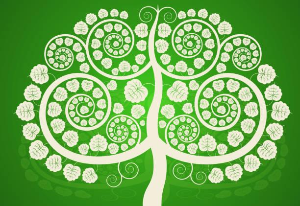 Plata árbol Bodhi - ilustración de arte vectorial