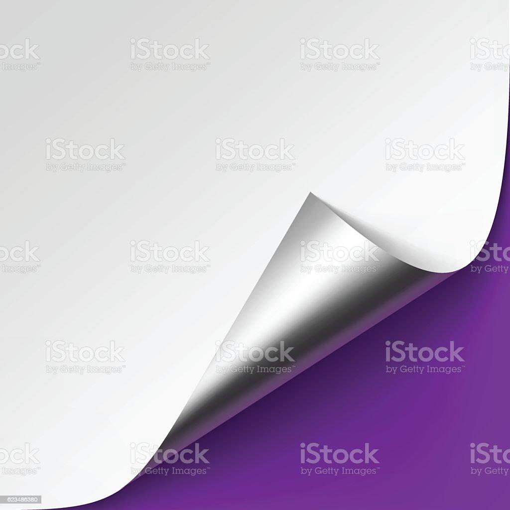 Silver corner of White paper on Violet Background vector art illustration