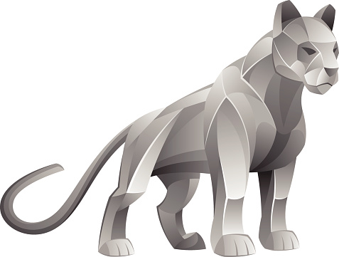 Silver cougar