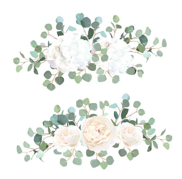 bildbanksillustrationer, clip art samt tecknat material och ikoner med silver dollar eukalyptus, vit ros och hortensia vektor design garland buketter - white roses