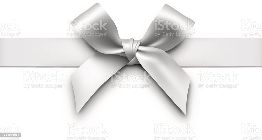 Silver Gift Bow with Ribbon