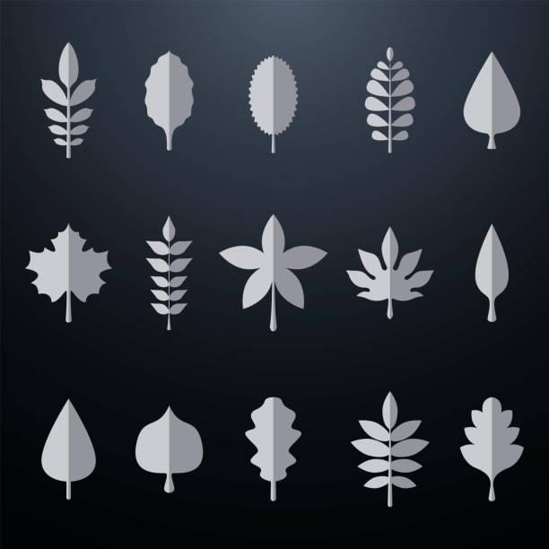 Silver leaves vector set vector art illustration