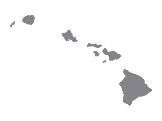 bildbanksillustrationer, clip art samt tecknat material och ikoner med silver karta över usa delstaten hawaii - delstat hawaii