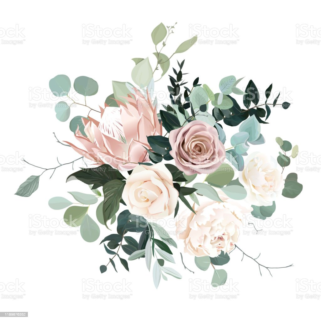 Silver Sage And Blush Pink Flowers Vector Design Bouquet Stock Illustration Download Image Now Istock
