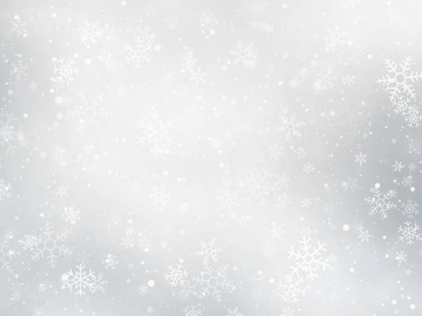 silver winter Christmas background with snowflakes vector art illustration