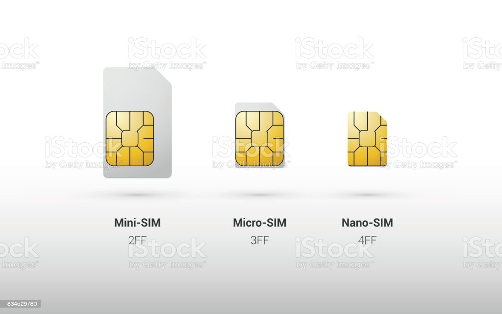 sim card overview comparison of types and sizes vector art illustration