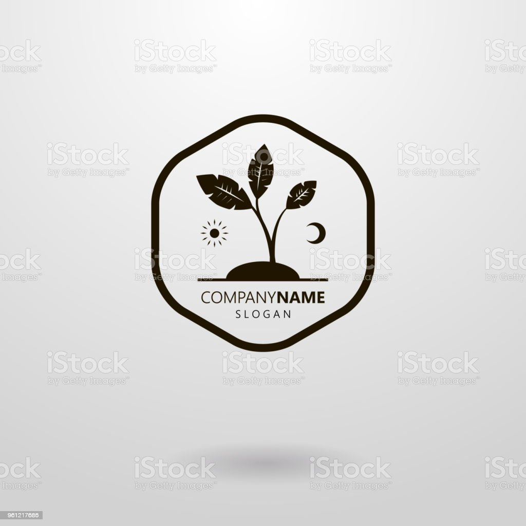 Simple Abstract Vector Icon Of The Sun And Moon Plant In A Frame