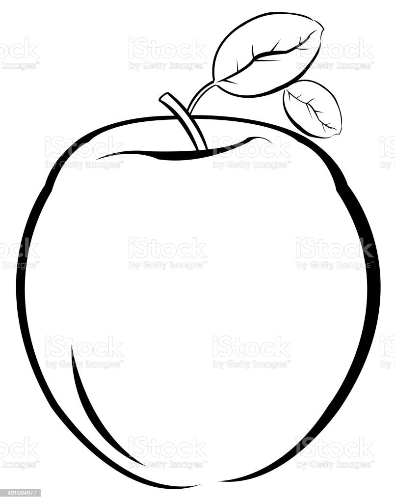 apple fruit clip art. apple - fruit, clip art, dieting, dinner, food fruit art