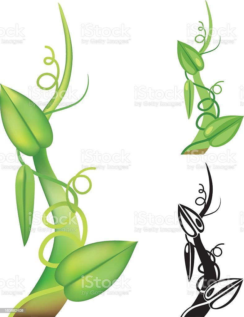 Simple Beanstalk royalty-free stock vector art