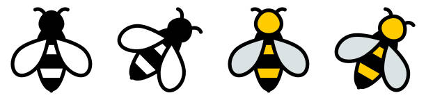 Simple bee icon, black / white and color version vector art illustration