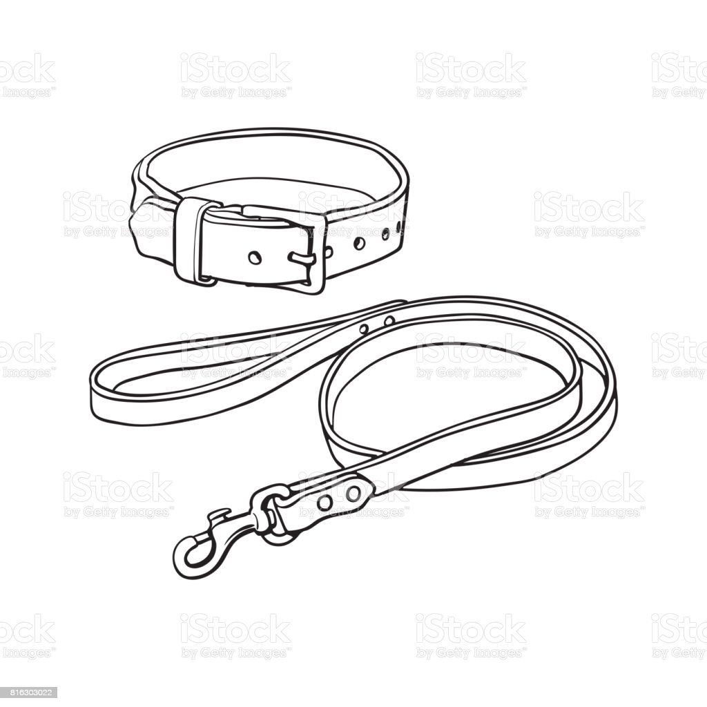 top white belt clip art  vector graphics and illustrations