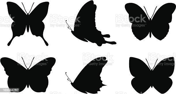 Simple butterfly shapes vector id165044282?b=1&k=6&m=165044282&s=612x612&h=vteaxfxrulg3yabetuafeohe3gdjqpio5zqnczjjm5c=