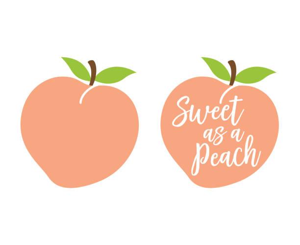 einfach niedlich pfirsich mit blätter-vektor-illustration - peach stock-grafiken, -clipart, -cartoons und -symbole