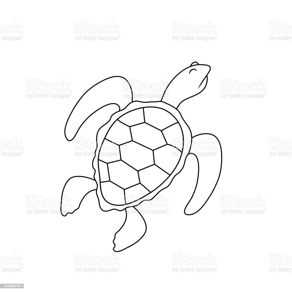 Bir Kaplumbağa Kibirli Bir Ifade Ile Basit çizim Stok Vektör Sanatı