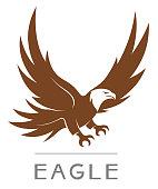 Vector bald eagle emblem on the white background.