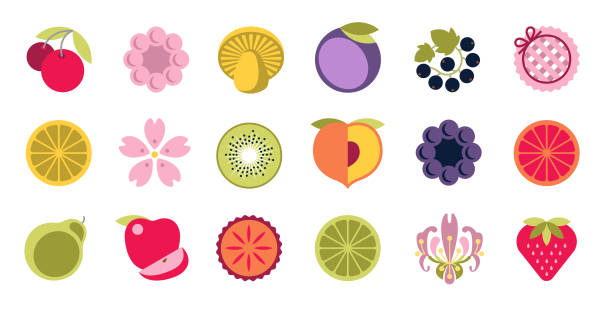 Simple elegant fruit, berry, flower, mushroom, jam, pie and other summer food and flavor illustration icons. Colourful vector design collection, stylized natural organic treats, rounded cute cartoon drawings. Perfect for menu, poster and greeting card art. black currant stock illustrations