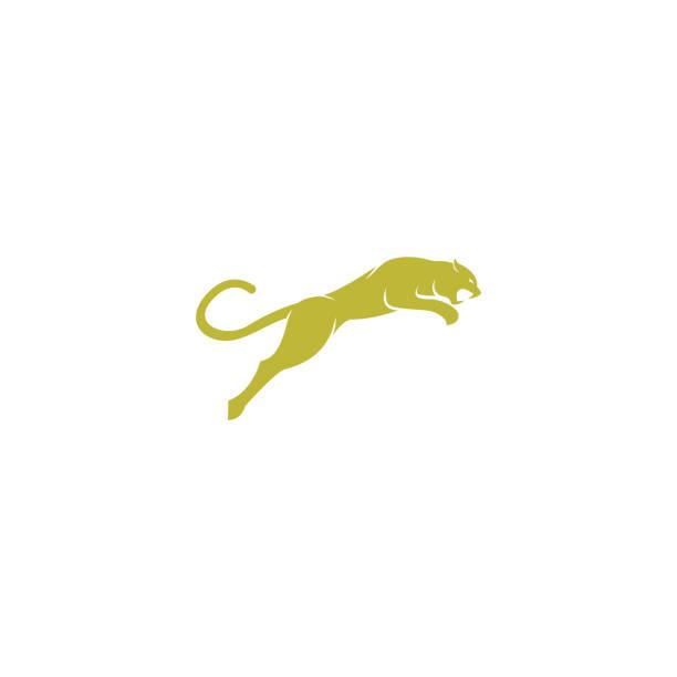 simple elegant roaring jaguar logo icon illustration vector template design. simple elegant roaring jaguar logo icon illustration vector template design. jaguar stock illustrations