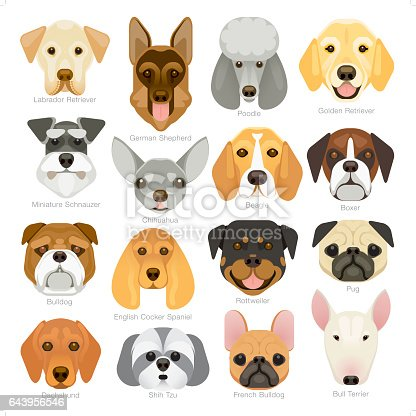 A set of 16 popular dog breeds icon in a simple geometrical style.