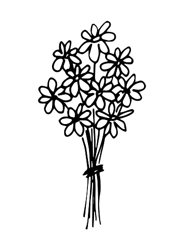Simple hand-drawn vector doodle style drawing. Bouquet of daisies in black outline isolated on a white background. For print postcards, spring summer holidays, mother's day.