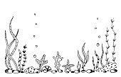 istock Simple hand-drawn vector drawing in black outline. Underwater world, seabed, nature. Kelp algae, reef corals, bubbles. For printing the label of fishing tackle, aquarium. 1314462030