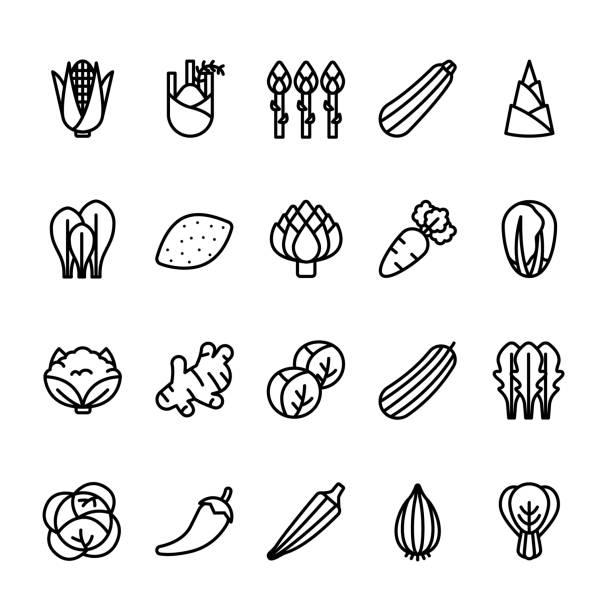 stockillustraties, clipart, cartoons en iconen met eenvoudige lijn icon set van groenten - sjalot