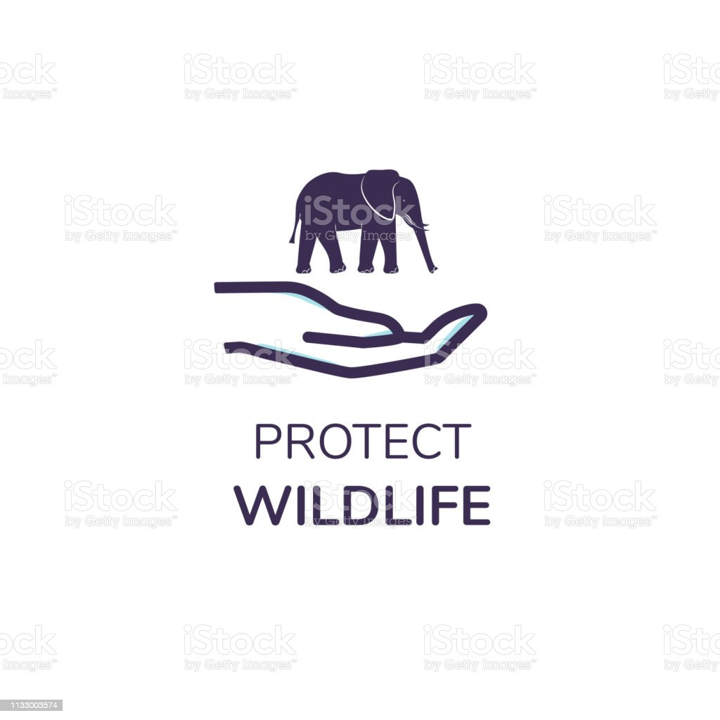 d29cdac944ee Simple logo with text  Protect Wildlife . Icon of a cute elephant in hand