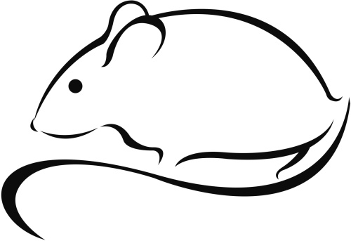 simple mouse
