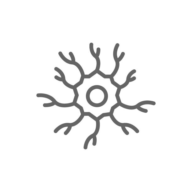 Simple neuron, nerve line icon. Symbol and sign vector illustration design. Editable Stroke. Isolated on white background Vector symbol or icon design element for companies nerve fiber stock illustrations
