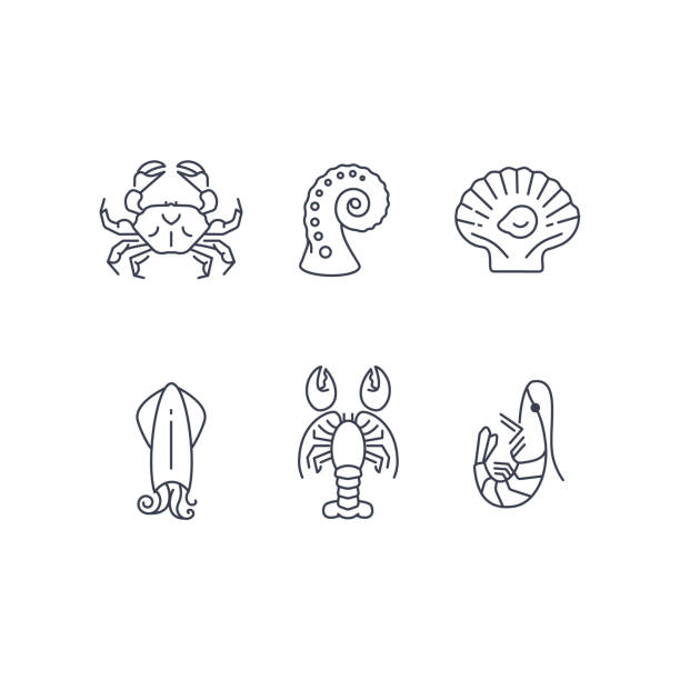 Simple sea animals icon set, vector seafood Simple sea animals icon set, vector seafood symbols collection isolated on white, flat design mollusk stock illustrations